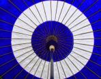 View Blue and White circle umbrella